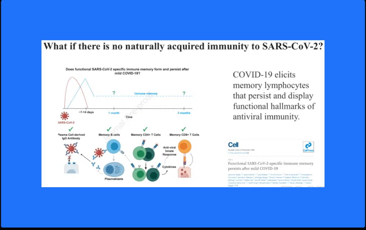 What if no immunity to SARS-CoV-2
